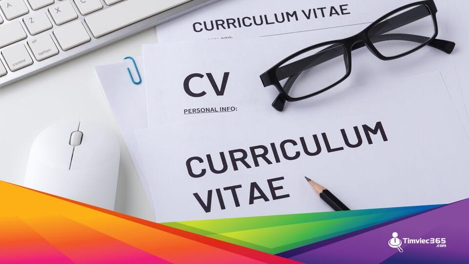 CV timviec365.com chuẩn về ngoại hình và chất lượng về nội dung