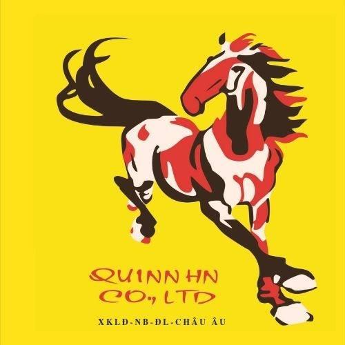 Công ty TNHH Đầu Tư, Thương Mại và Dịch vụ Quinn Hà Nội